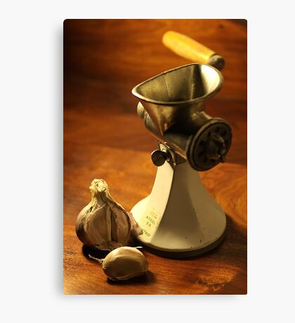Model S B - Mincer Canvas Print
