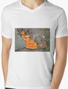 Chicken Of The Woods Fungi - Laetiporus sulphureus Mens V-Neck T-Shirt