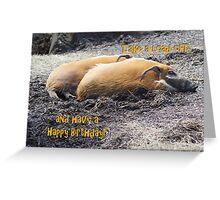 Happy Birthday Card 6 Greeting Card