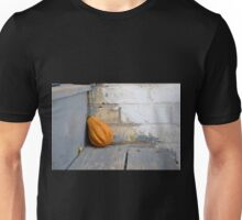 Small Gourd on the Stairs Unisex T-Shirt