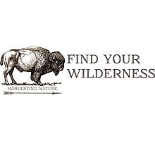 Find Your Wilderness Photographic Print