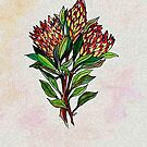 Protea South African Flowers by Deb Coats