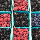 Summer Berries by Christine  Wilson