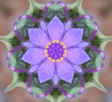 Spiderwort Flower Reflections Sticker