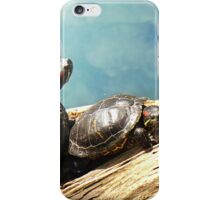 Red Eared Slider Turtles iPhone Case/Skin