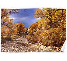 High Desert Autumn Poster