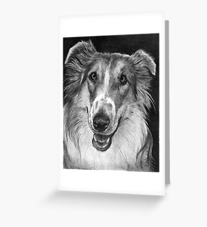 ROUGH COLLIE- Gracie Greeting Card