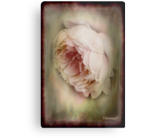 Faded beauty Metal Print