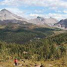 Panoramic landscape by zumi