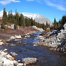 Creek in the valley by zumi