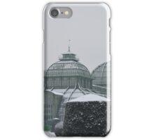 Austria in winter iPhone Case/Skin
