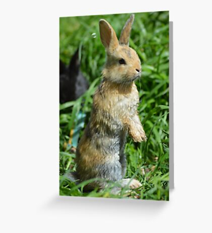Cornellius the most entertaining bunny ever Greeting Card