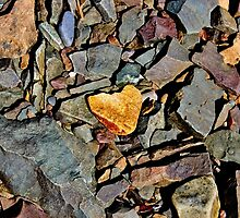 A Heart of Stone by Kathleen Daley