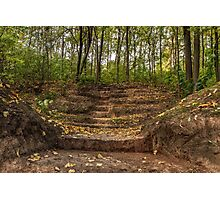 Stairs dug earth to climb to the forest Photographic Print