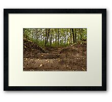 Stairs  to the forest Framed Print