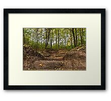 Stairs dug earth in forest Framed Print