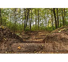 Stairs dug earth in forest Photographic Print