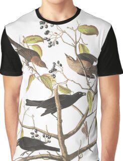 Rusty Blackbird - John James Audubon  Graphic T-Shirt