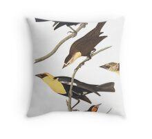 Black Birds - John James Audubon  Throw Pillow