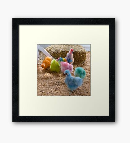 Rainbow Silkies Framed Print