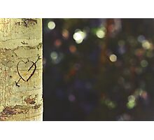Nature lovers Photographic Print