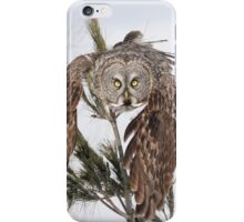 You shall bow before me iPhone Case/Skin