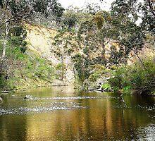 *Lerderderg River - Melton, Vic.* by EdsMum