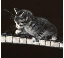 CAT 6 , PIANO COMPOSITION Sticker