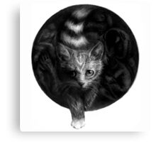 CIRCLE ART - CAT WALKS IN THE DARK Canvas Print