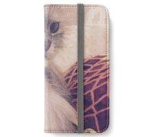 Kitten iPhone Wallet/Case/Skin