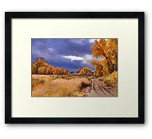 High Desert Autumn II Framed Print