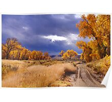 High Desert Autumn II Poster