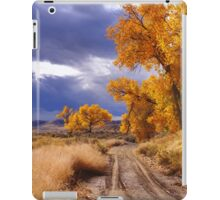 High Desert Autumn II iPad Case/Skin