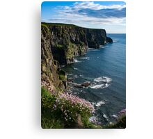 Cliffs Of Moher, Clare, Ireland Canvas Print