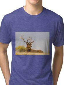 KING OF THE HILL Tri-blend T-Shirt