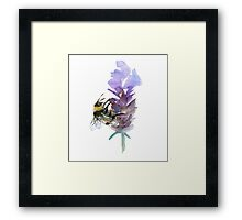 Bee on lavender watercolor Framed Print