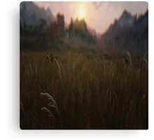 All about the grass Canvas Print