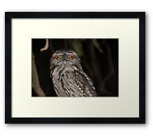 In my sights Framed Print