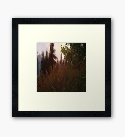 All about the grass 2 Framed Print