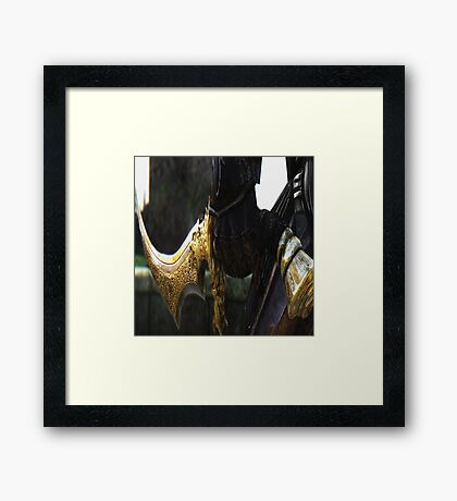 Beautiful Engraving Framed Print