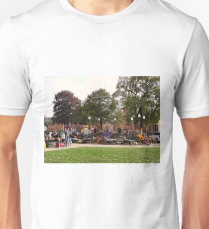 Celebration in the park Unisex T-Shirt