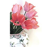 Gathered Tulips Photographic Print