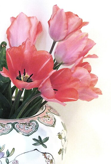Gathered Tulips by AngieDavies