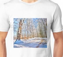 The kingdom of Winter Unisex T-Shirt