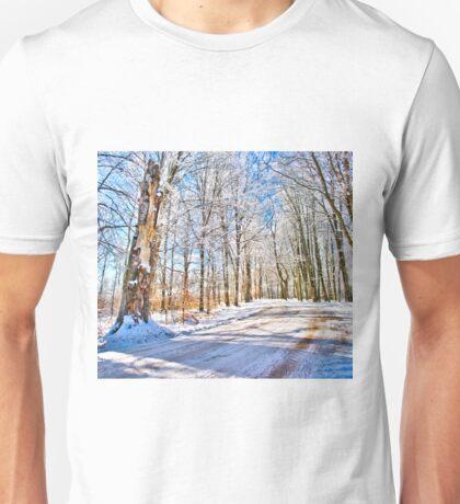 The kingdom of Winter Unisex T-Shirt
