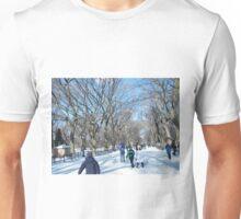 Central Park in Snow Unisex T-Shirt