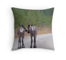 Mother and Calf: Kennedy Siding Caribou 2016 Throw Pillow