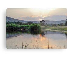 landscape african  lake Metal Print