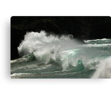 wave watching Canvas Print