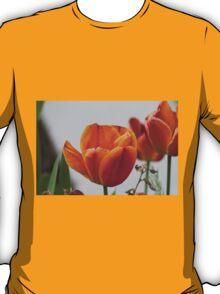 tulip in spring T-Shirt
